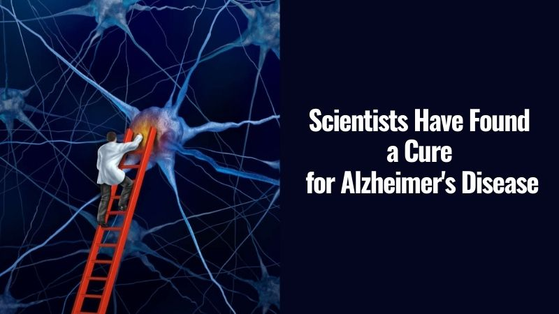 Scientists Have Found a Cure for Alzheimer's Disease